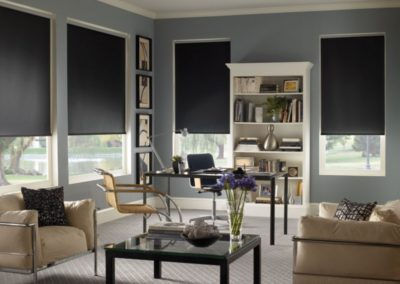 $100 Discount On Century Motorized Roller Shades