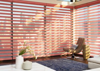 $150 Rebate on Hunter Douglas Pirouette Window Shadings