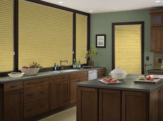 Perfect Pitch Pleated Cellular Zblinds