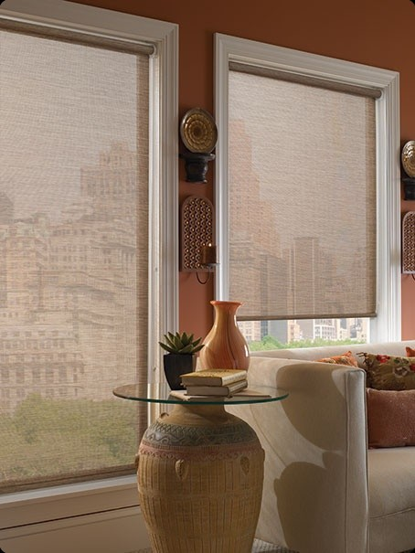 100 Discount On Century Motorized Roller Shades Zblinds