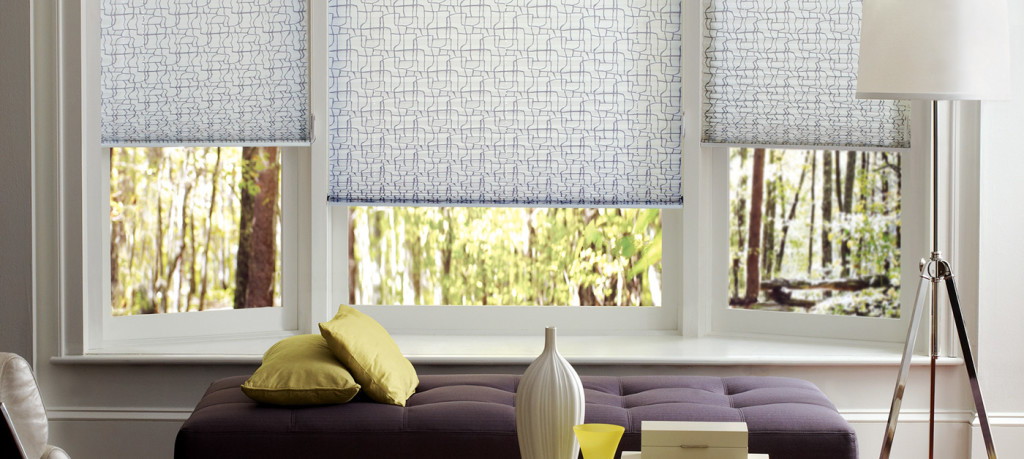 ZBlinds Company Fresno | Pleated Shades