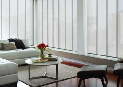$150 Rebate on Hunter Douglas Skyline Gliding Window Panels